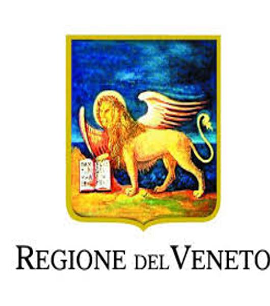 La Regione intende unificare gli ex fondi speciali per la SLA con le ICD