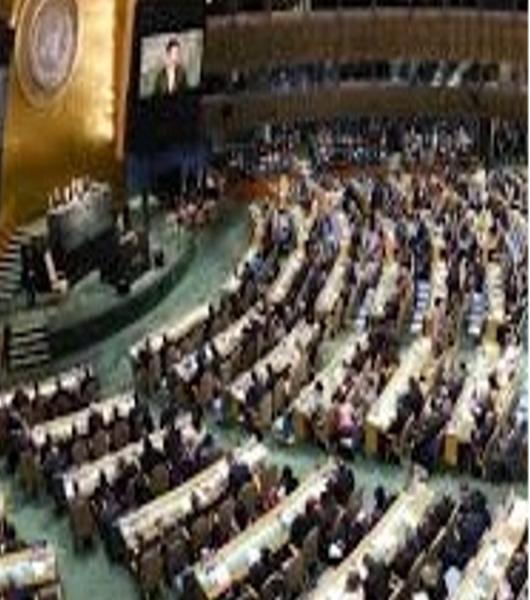 Le malattie rare per la prima volta in una dichiarazione dell'ONU